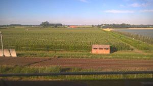 Bahnstrecke zwischen gigantischen Agrarfläche