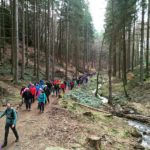 Guided Tour - Mullerthal Trail