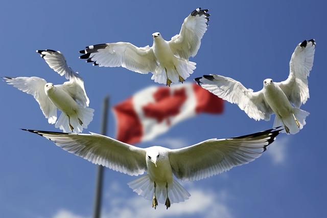 Kanada Eta Antrag