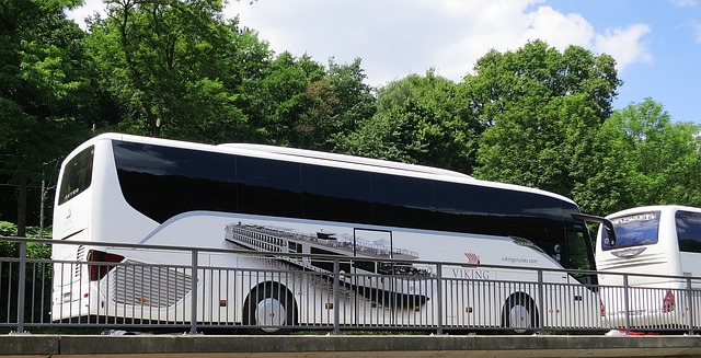 Road Trip Europa mit Bus