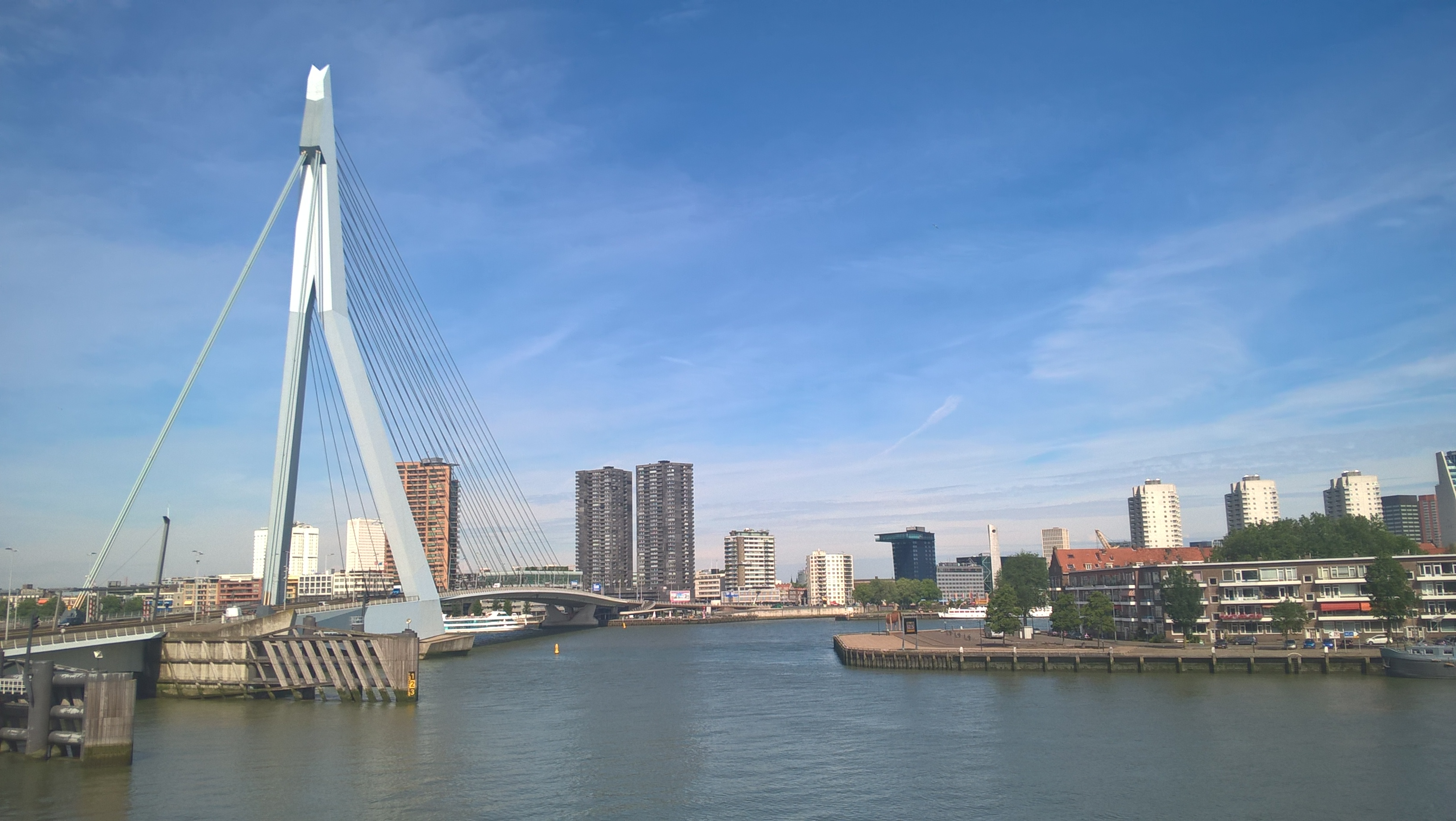 Die Erasmusbrug in Rotterdam
